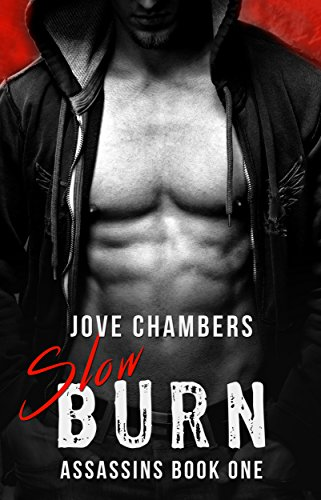 Slow Burn by V. J. Chambers