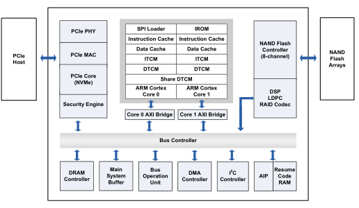 XPG SX8200 Pro vs HP EX950 - TechInfa com