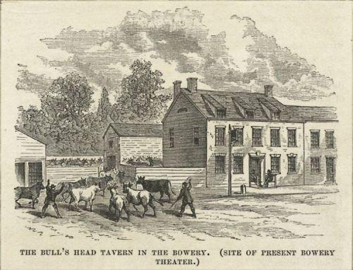 bulls head tavern