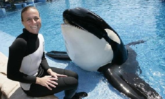 Artistas cancelan actuaciones en SeaWorld después de ver Blackfish