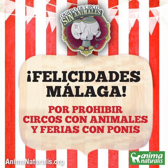 Málaga prohíbe por unanimidad los circos con animales y las ferias de ponis