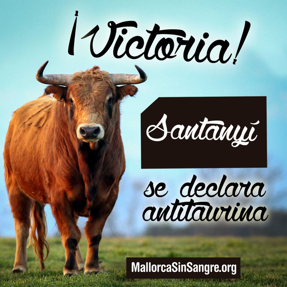 ¡Victoria! Santanyí vota a favor de abolir la tauromaquia en Mallorca