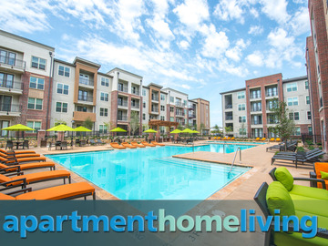 1 Bedroom Apartment Plano Tx Cheap Plano Apartments For Rent 500Cheap 1  Bedroom Apartments In Plano Tx Amazing Bedroom Living1 Bedroom Apartments Plano Texas  1 Bedroom Apartments Plano Tx  . 1 Bedroom Apartments Plano Tx. Home Design Ideas