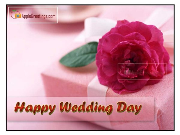 16 Wedding Day Anniversary Wishes Images And Greeting Cards 2020