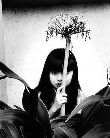 Nobuyoshi Araki, From the series