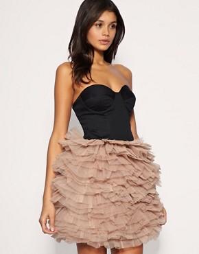 Image 1 ofRare Opulence Corset Ballet Net Dress