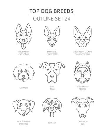 Top Dog Breeds Pet Outline Collection Vector Illustration Royalty Free Vector Graphics