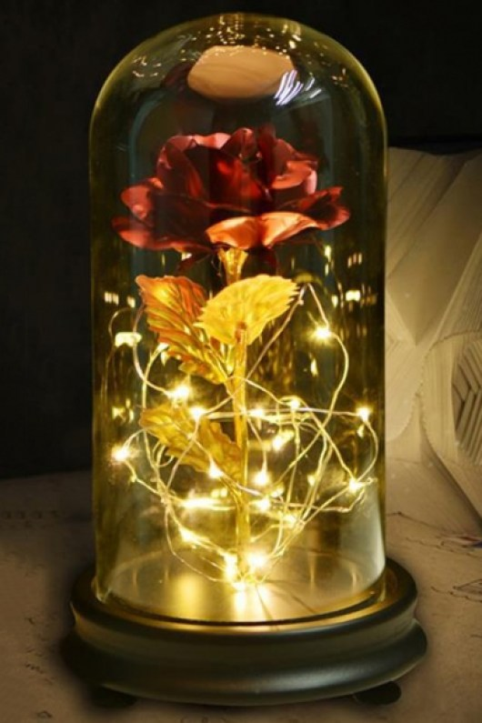 Beauty and The Beast LED Rose Flower in Glass Dome on Wood Base Gift Home  Decorations - Beautifulhalo.com
