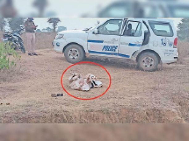 हत्या: युवक के कुल्हाड़ी से कई टुकड़े किए, कुछ अंग सूखे बोरवेल में फेंके और बाकी जमीन में गाढ़ दिए
