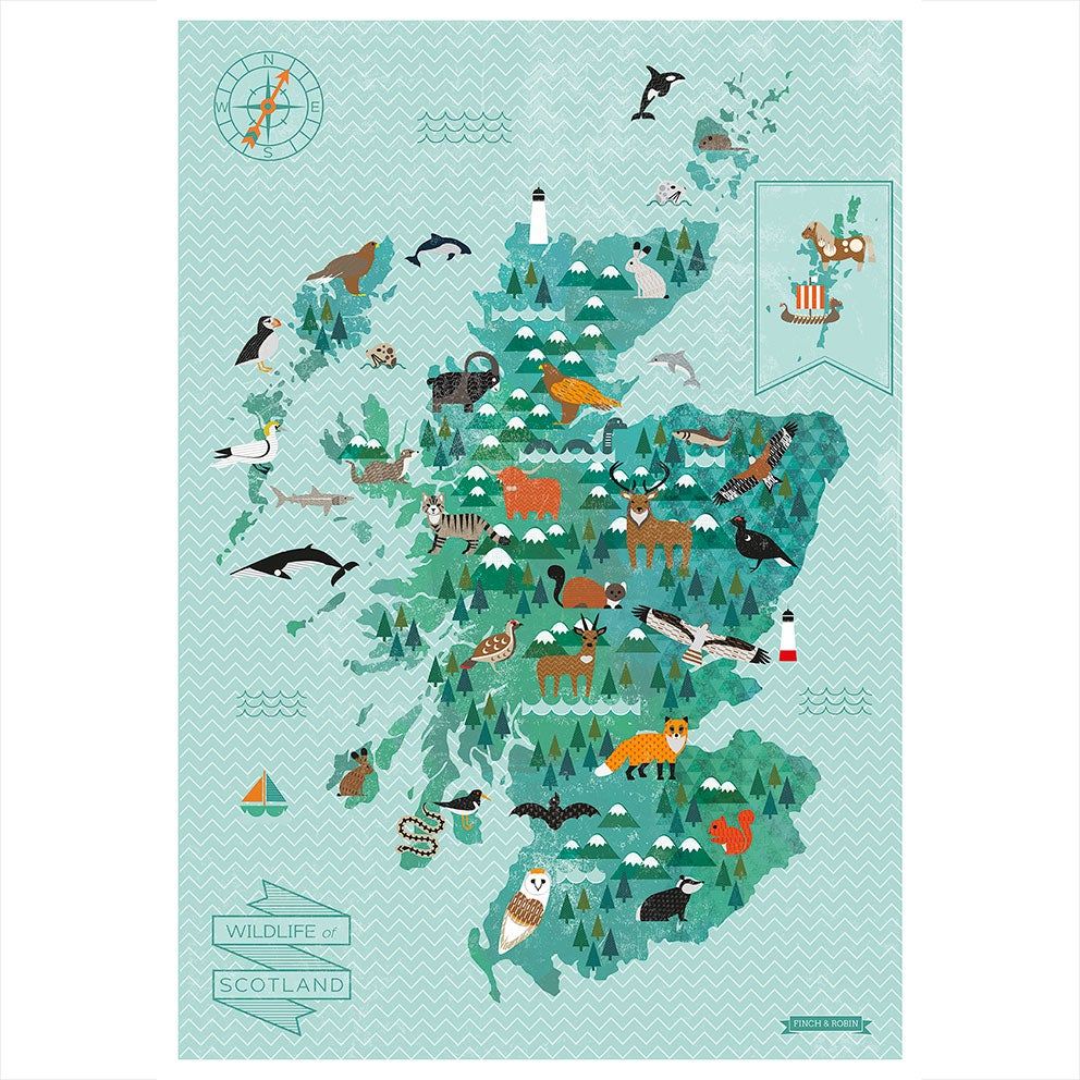 A2 Wildlife Of Scotland Map Kate McLelland
