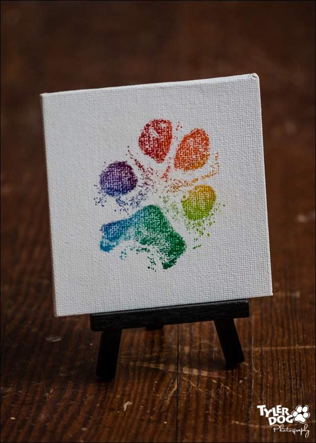 TylerDog Cards Amp Gifts 4x4 Canvas Paw Print W