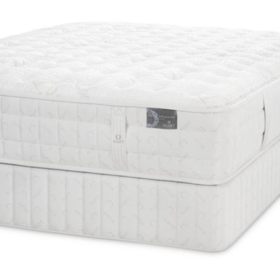 Kluft Latex Harrison Mattress Collection 100 Exclusive