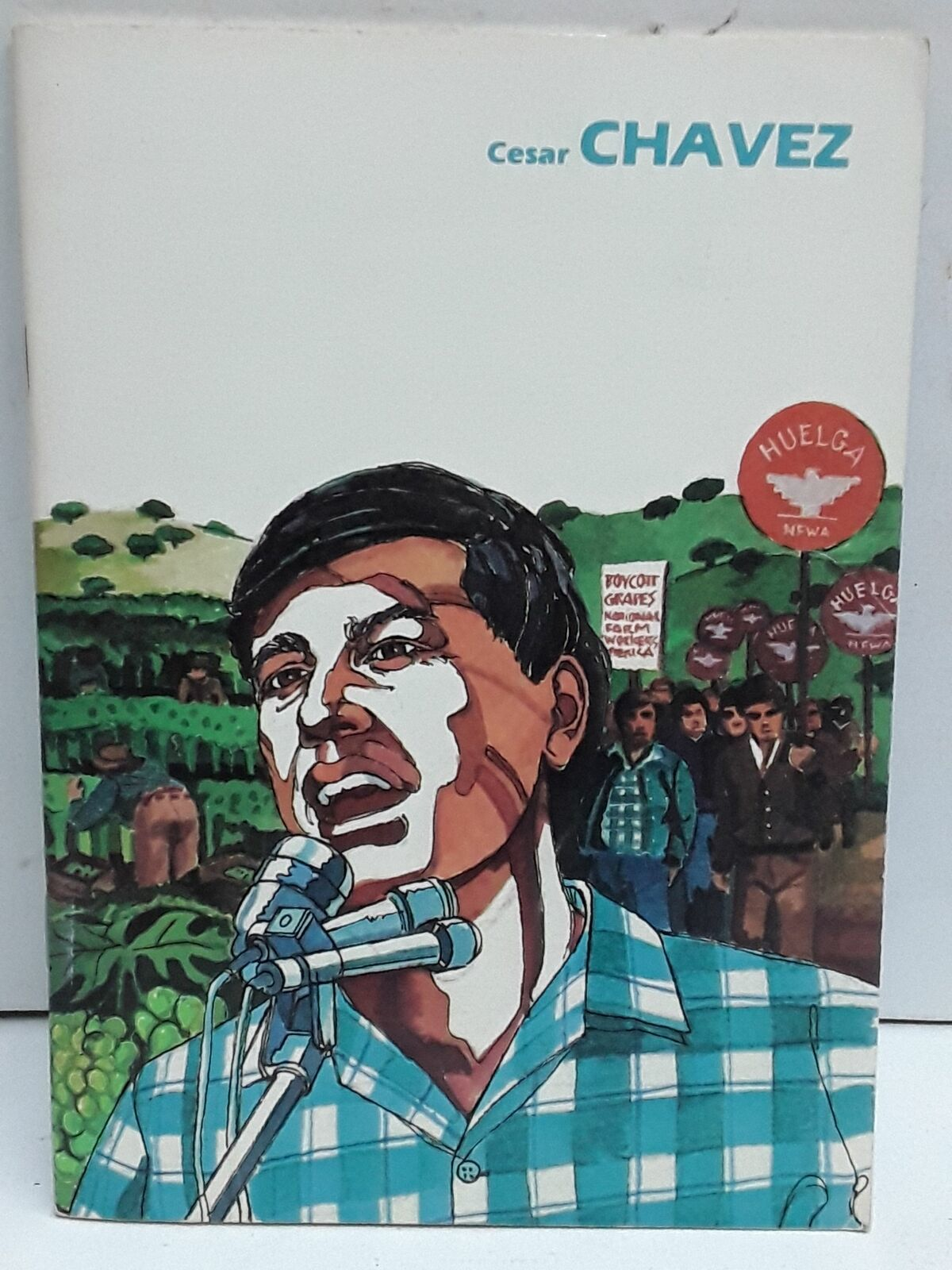 Cesar Chavez Biographies From American History