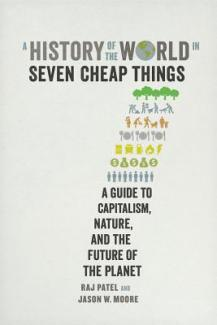 Cover for A History of the World in Seven Cheap Things