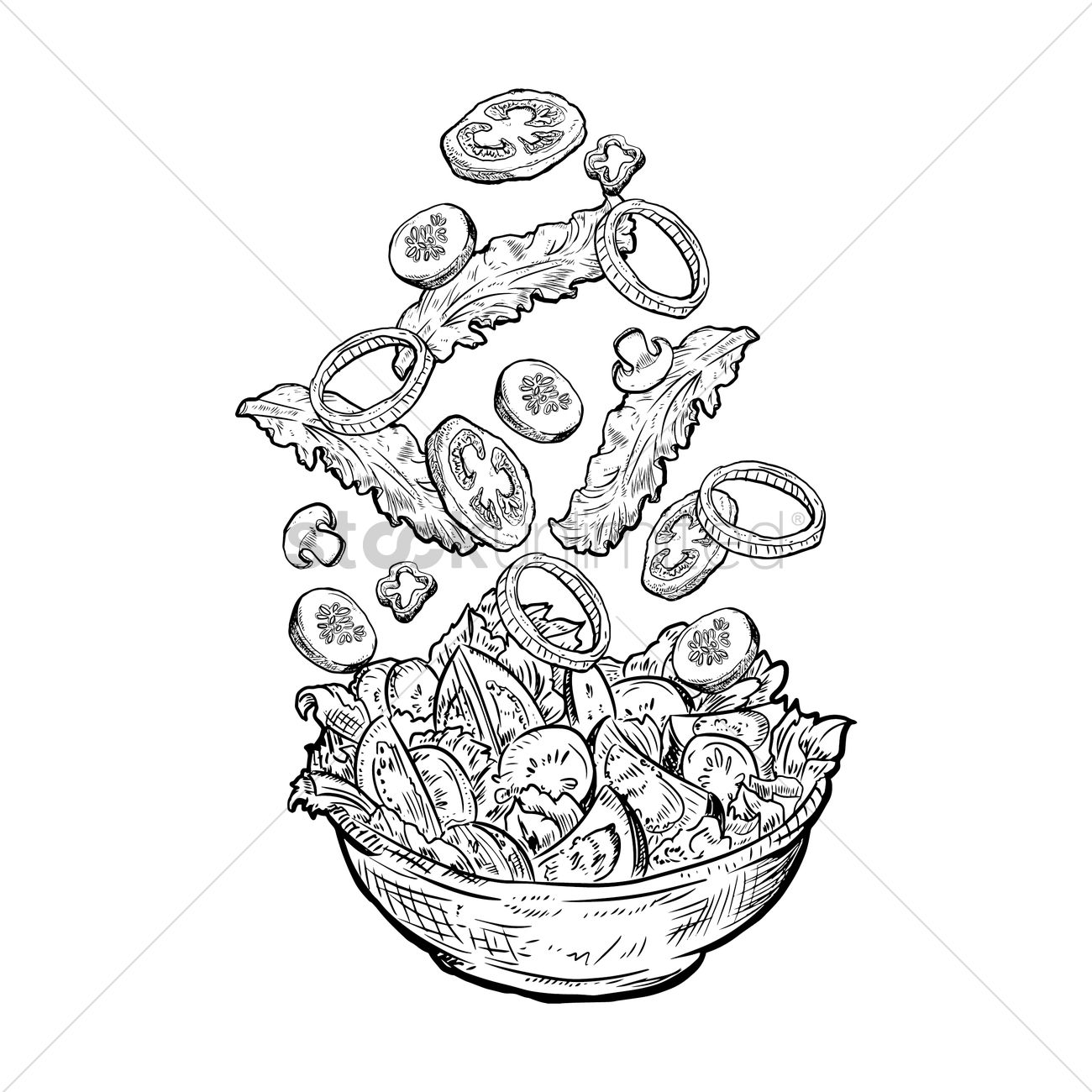 Tossed Salad Vector Image