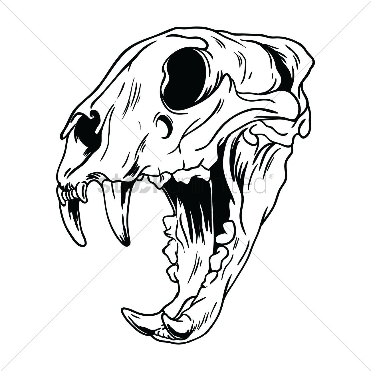 Free Tiger Skull Vector Image