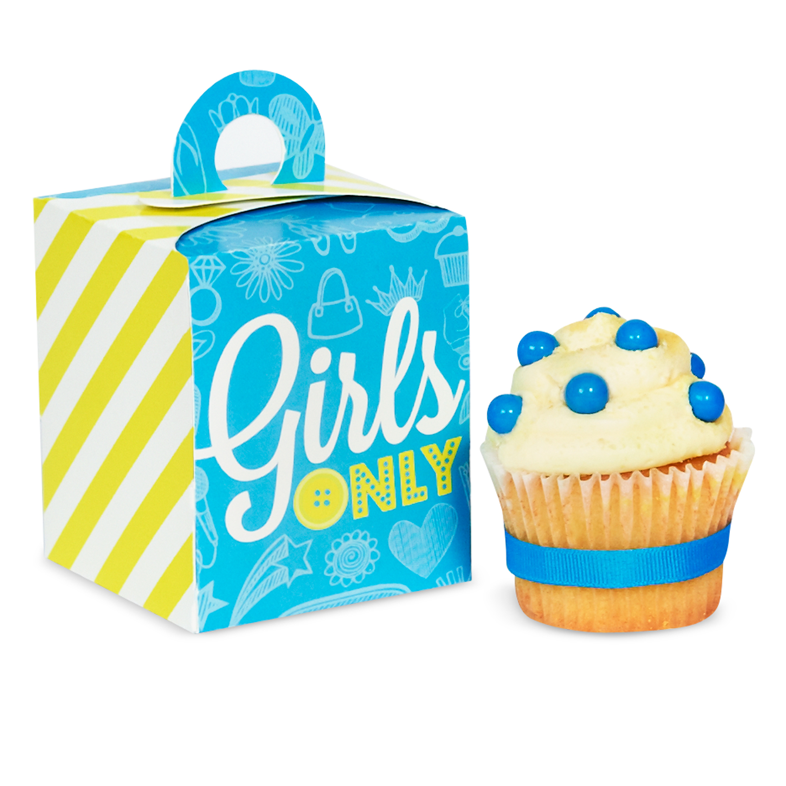 Girls Only Party Cupcake Boxes