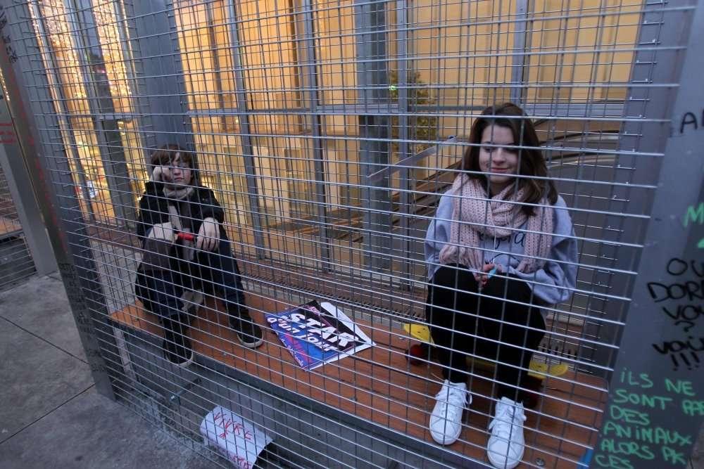 Les deux adolescents ont réussi à se glisser dans la cage