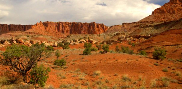 Some of the intense red rock in the Park.