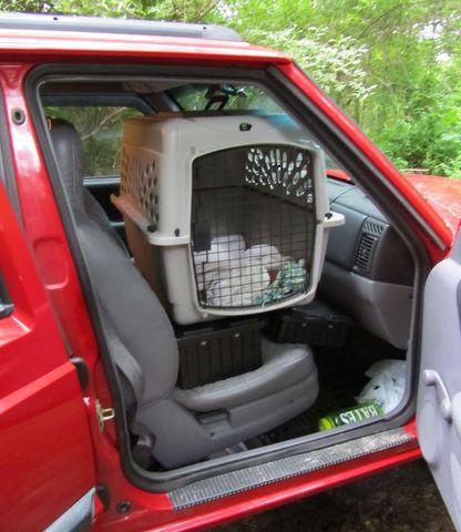 Jeep-IMG_0863