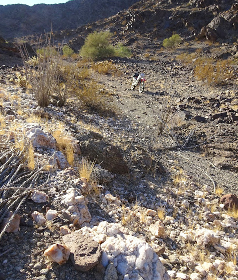 They found this quartz vein not far from camp. They ride the bike all over the desert--its cheap and fun!