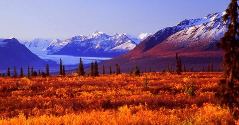 I took this picture on the Glenn Highway about 150 miles north of Anchorage near Eureka Summit. It is a must-see!!