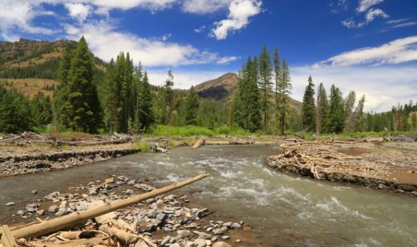 bill-river-lodge