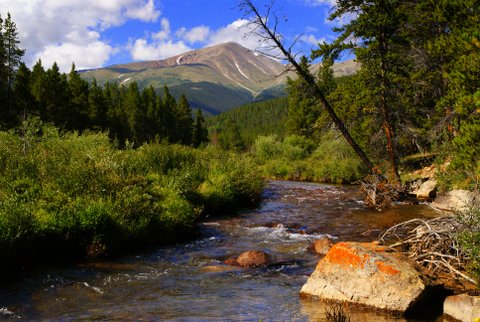 In 2008 I was a campground host in Colorado. I took this picture about a mile from my camp site. That is Mt. Elbert, the highest peak in Colorado.
