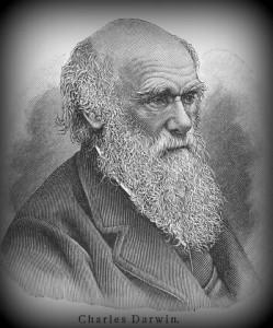 Jung-Darwin