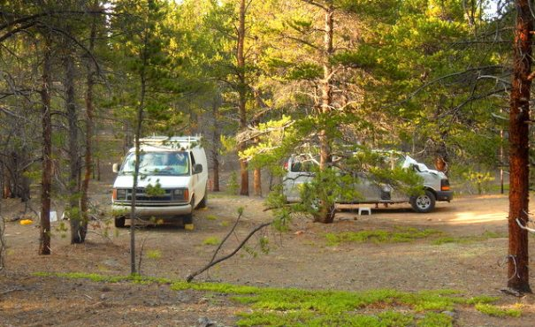 Our camp in the forest.