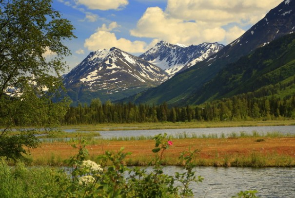 This is Tern Lake, named after the abundance of Arctic Tern that nest there.
