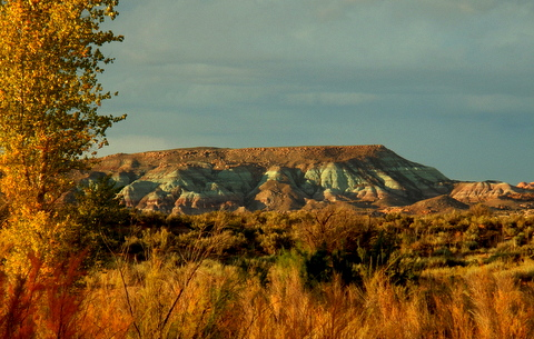 """I see this view every day from my camp in Moab, UT. But only because I said, """"YES!"""""""