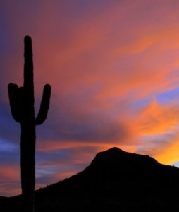 Ho-Hum, another Spectacular  sunset in Arizona.