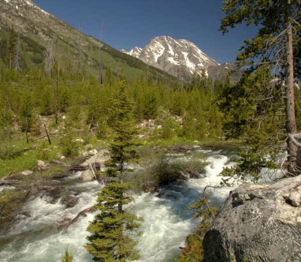 A wild River in the Tetons.