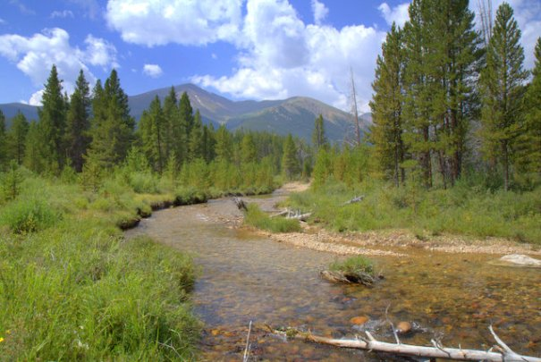This is the view from one of the campgrounds I've been a host at in the National Forest. Wouldn't you like this to be the view from your cubicle! But actually be there instead!!