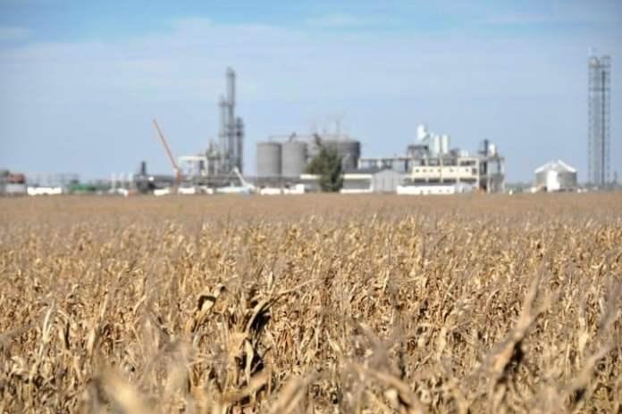 La agroindustria ya aporta el 6,2% de la energía argentina