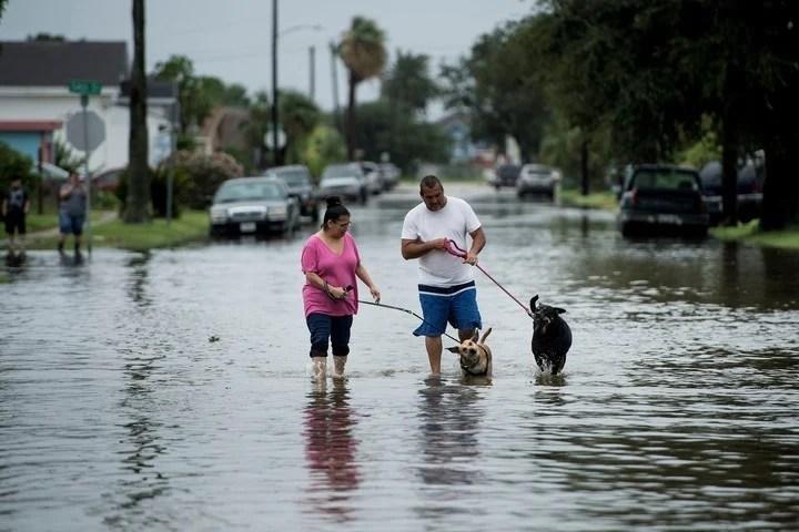El huracán Harvey se debilita, pero golpea con lluvias e inundaciones: dos muertos