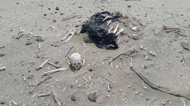 Vecinos que paseaban en cuatriciclo encontraron veinte esqueletos humanos en una playa de Chubut
