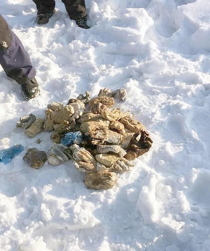 Encuentran una bolsa con 54 manos humanas en un río siberiano