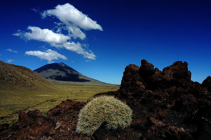 Reserva La Payunia en Malargüe, Mendoza (Delfo Rodríguez).