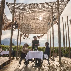 La experiencia de Tegui en un viñedo del Valle de Uco