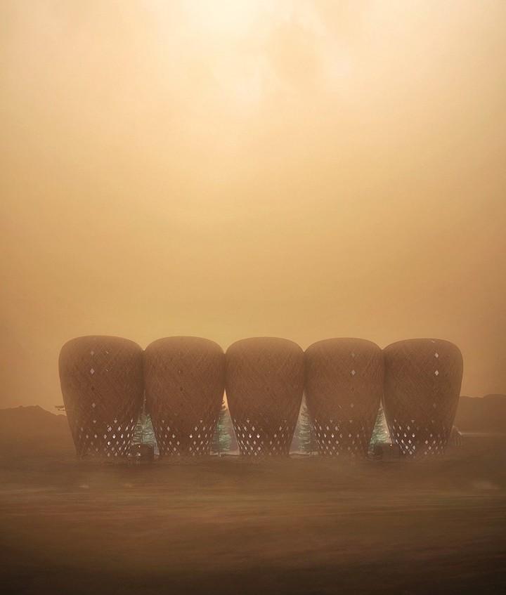 Cestos de caña. Los investigadores aseguran que la planta puede ser transportada en pequeños brotes y, una vez en el Planeta Rojo, podría crecer a un ritmo mayor que en la tierra por la abundancia de dióxido de carbono en la atmósfera (© Karim Moussa, Warith Zaki, Amir Amzar, Nasril Zarudi).