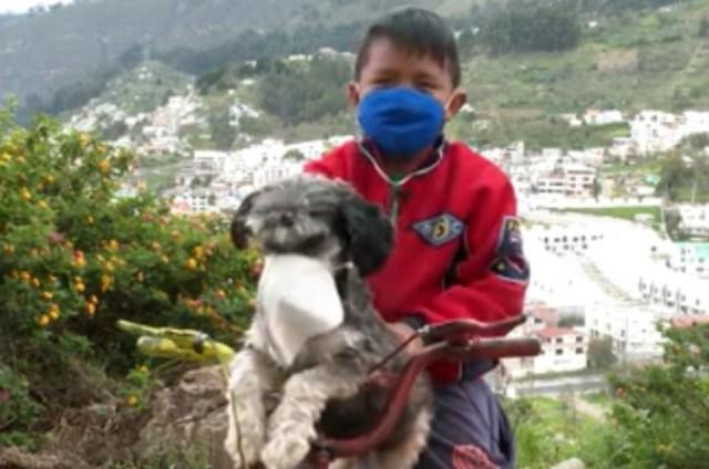 El gesto del niño de 10 años de colocar un barbijo a su perro Gudi al salir a la calle dio la vuelta al mundo. Foto: captura CNN