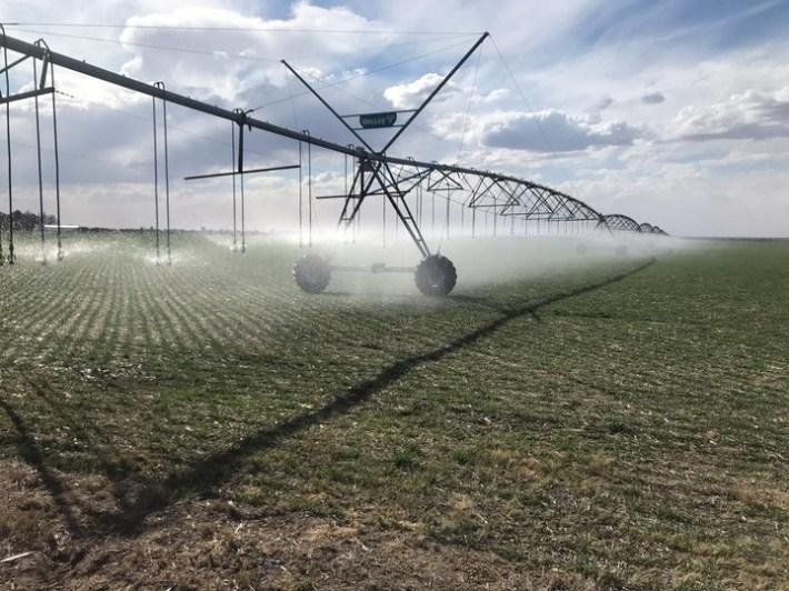 Lo más barato es acceder a la tierra pero para poder producir, se necesita de una importante inversión  en equipos de riego para llevar el agua del río al lote.
