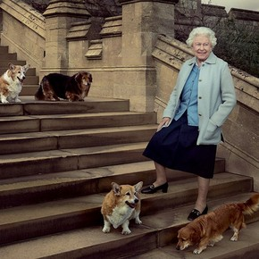 Queen Elizabeth II: the story of her weakness for corgi dogs and the eccentric care she assures them
