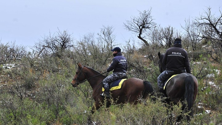 The rakes to search for Guadalupe Lucero, this Saturday, in San Luis ANSL Photo