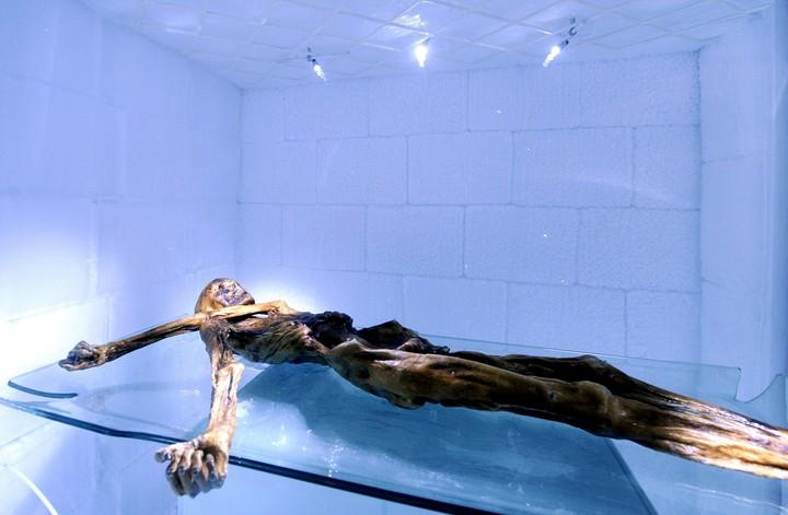 """El esqueleto de Oetzi el milenario hombre de los hielos, expuesto en una cámara frigorífica en el museo arqueológico de Bolzano, Itaila, con motivo de la exposición """"20 años de Oetzi""""."""