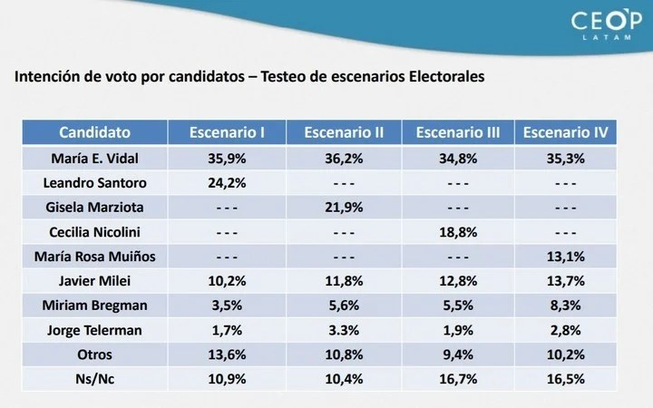CEOP Latam survey in CABA.  Voting intention of the pre-candidates.