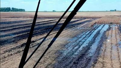 En el sur de Santa Fe. la soja se está cosechando con graves pérdidas de calidad y problemas de piso.