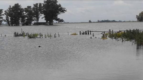 El agua ahora jaquea la producción en General Villegas. Aquí, al costado de la Ruta Nacional 226.